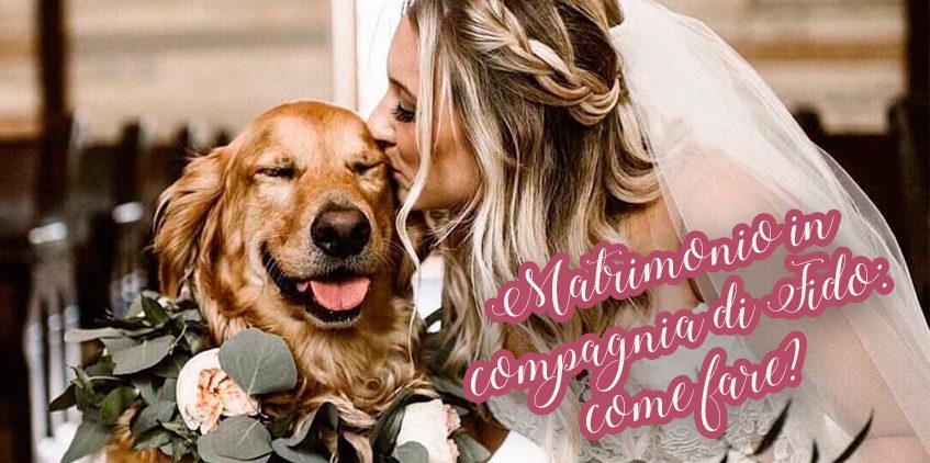 Matrimonio in compagnia di Fido: come fare?